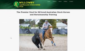 willowby stock horses